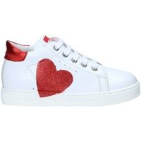 Schoenen Meisjes Lage sneakers Falcotto 2012816 07 Wit