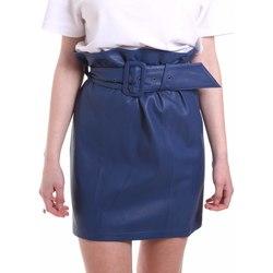 Textiel Dames Rokken Federica Tosi FTE20GO036.0VPELLE Blauw
