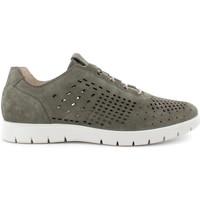 Schoenen Heren Lage sneakers IgI&CO 7118333 Groen
