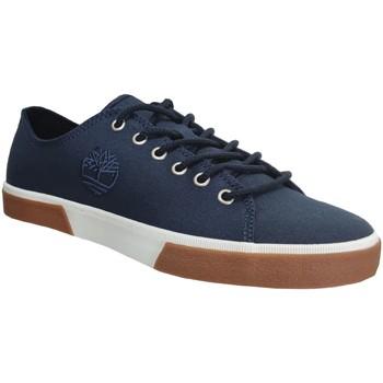Schoenen Heren Lage sneakers Timberland Union wharf 2,0 ek Marineblauw canvas