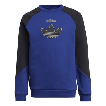 Textiel Kinderen Sweaters / Sweatshirts adidas Originals ROUGED Multicolour