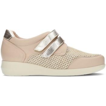 Schoenen Dames Lage sneakers Dtorres GINA 44 BEIGE
