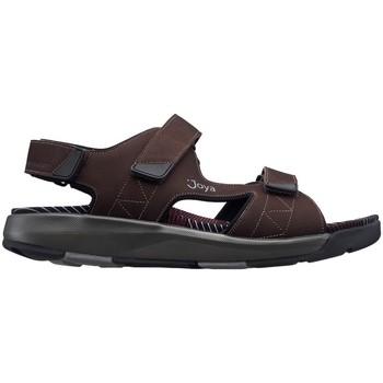 Schoenen Heren Sandalen / Open schoenen Joya Capri III DONKER BRUIN