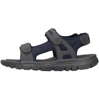 Schoenen Heren Sandalen / Open schoenen Skechers 51874 BLACK