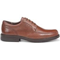 Schoenen Heren Derby & Klassiek Fluchos 9579 CIDACOS CLIPPER BRUIN