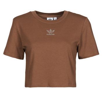 Textiel Dames T-shirts korte mouwen adidas Originals CROPPED  TEE Bruin