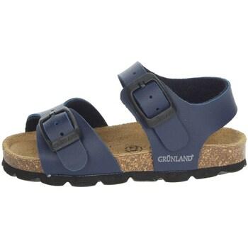 Schoenen Kinderen Sandalen / Open schoenen Grunland SB0027-40 Blue