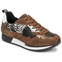 Schoenen Dames Lage sneakers Philippe Morvan ROXA Bruin / Zwart