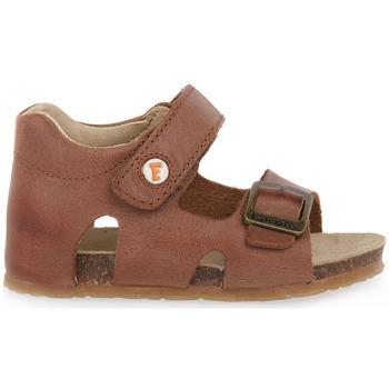 Schoenen Jongens Sandalen / Open schoenen Naturino FALCOTTO 0D07 BEA CUOIO Marrone