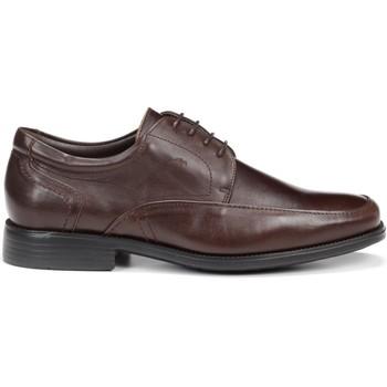 Schoenen Heren Derby Fluchos 7995 MALLORCA RAFAEL KOFFIE