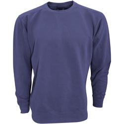 Textiel Sweaters / Sweatshirts Comfort Colors CC1566 Middernacht