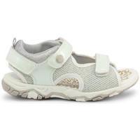 Schoenen Jongens Sandalen / Open schoenen Shone - 1638-035 Wit