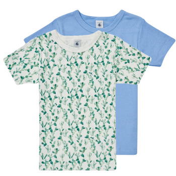 Textiel Jongens T-shirts korte mouwen Petit Bateau LOLITA Multicolour