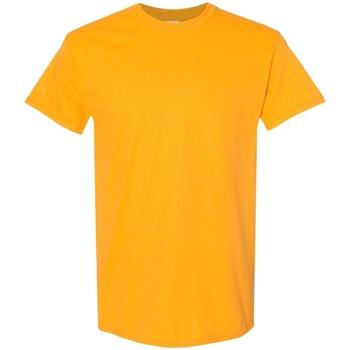 Textiel Heren T-shirts korte mouwen Gildan 5000 Goud