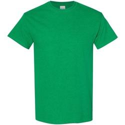 Textiel Heren T-shirts korte mouwen Gildan 5000 Antiek Iers Groen