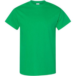 Textiel Heren T-shirts korte mouwen Gildan 5000 Iers Groen