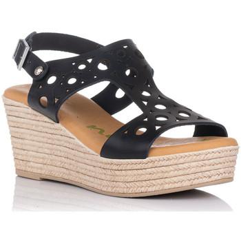 Schoenen Dames Sandalen / Open schoenen Zapp 4705 Zwart