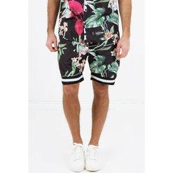 Textiel Heren Korte broeken / Bermuda's Sixth June Short  tropical noir