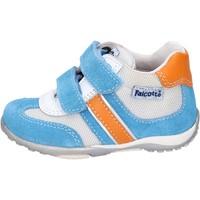 Schoenen Jongens Lage sneakers Falcotto Sneakers BH196 Blauw