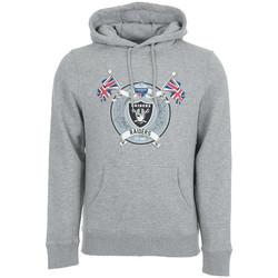 Textiel Heren Sweaters / Sweatshirts Fanatics  Grijs
