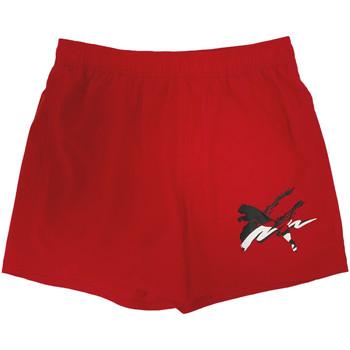 Textiel Heren Zwembroeken/ Zwemshorts Puma 586743 Rood