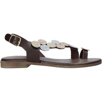 Schoenen Dames Sandalen / Open schoenen IgI&CO 7176322 Bruin