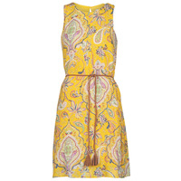 Textiel Dames Korte jurken Desigual ADRIANA Multicolour