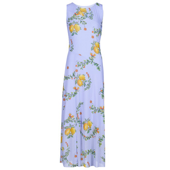 Textiel Dames Lange jurken Desigual MIAMI Multicolour