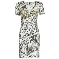 Textiel Dames Korte jurken Desigual WILD Multicolour