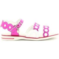 Schoenen Meisjes Sandalen / Open schoenen Melania ME4006D6E.A Roze