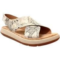 Schoenen Dames Sandalen / Open schoenen Clarks Jemsa cross Taupe leer