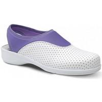 Schoenen Dames Lage sneakers Feliz Caminar Zueco Laboral SPORT LYCRA - Multicolour
