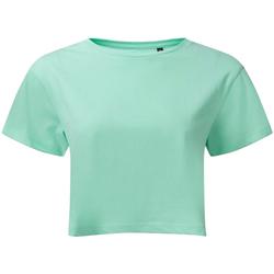 Textiel Dames Tops / Blousjes Tridri TR019 Pepermunt