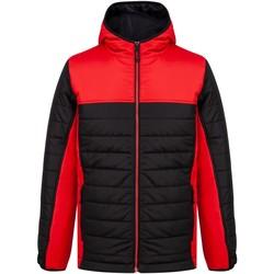 Textiel Dons gevoerde jassen Finden & Hales LV660 Zwart/Rood