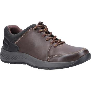 Schoenen Heren Lage sneakers Cotswold  Bruin