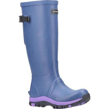 Schoenen Dames Regenlaarzen Cotswold  Blauw