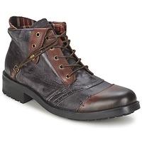 Schoenen Heren Laarzen Kdopa CARLO Bruin