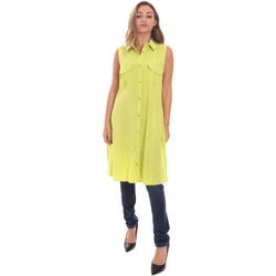 Textiel Dames Overhemden Fracomina FR21ST1017W42801 Groen