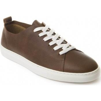 Schoenen Heren Derby Montevita 71857 BROWN