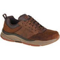 Schoenen Heren Lage sneakers Skechers Benago-Treno Marron