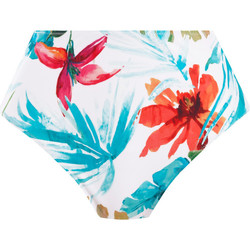 Textiel Dames Bikinibroekjes- en tops Fantasie FS501278 AQE Wit