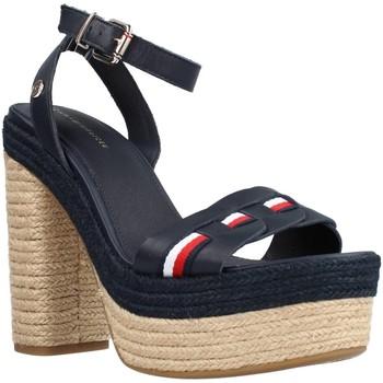 Schoenen Dames Sandalen / Open schoenen Tommy Hilfiger FW0FW05612 Blauw