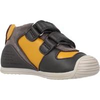 Schoenen Jongens Laarzen Biomecanics 211132 Oranje