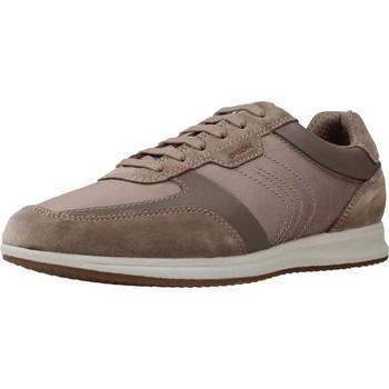 Schoenen Heren Lage sneakers Geox U AVERY Bruin