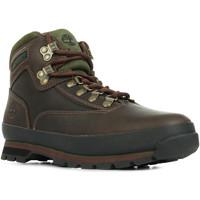 Schoenen Heren Laarzen Timberland Euro Hiker Leather Bruin