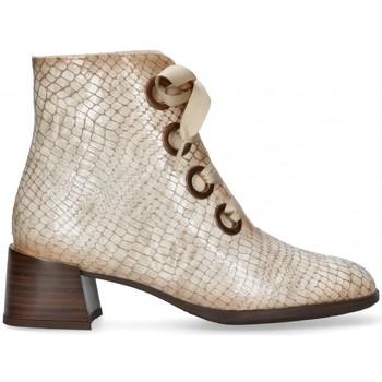 Schoenen Dames Enkellaarzen Hispanitas 58167 Bruin