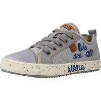 Schoenen Jongens Lage sneakers Geox J ALONISSO BOY Grijs
