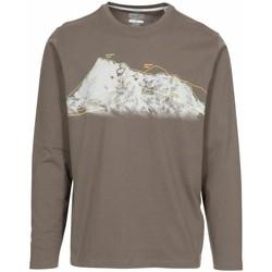 Textiel Heren T-shirts met lange mouwen Trespass  Khaki