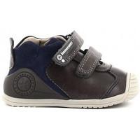 Schoenen Jongens Lage sneakers Biomecanics 211140 Gris