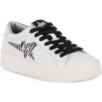 Schoenen Dames Lage sneakers Sun68 SUN68 0144 BETTY Bianco